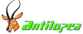 client antilopea